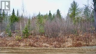 Photo 3: Lot #6 Route 740 in Heathland: Vacant Land for sale : MLS®# NB053419