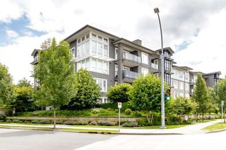 """Photo 36: 203 550 SEABORNE Place in Port Coquitlam: Riverwood Condo for sale in """"FREMONT GREEN"""" : MLS®# R2479309"""