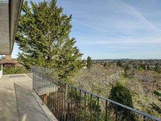 Photo 16: 3715 Doncaster Dr in VICTORIA: SE Cedar Hill House for sale (Saanich East)  : MLS®# 805156