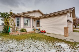 Main Photo: 232 Applewood Drive SE in Calgary: Applewood Park Detached for sale : MLS®# A1044158
