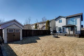 Photo 7: 121 Bridlewood Court SW in Calgary: Bridlewood Detached for sale : MLS®# A1096273