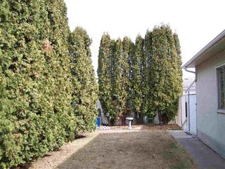 Photo 5: 11944 139 Avenue in Edmonton: Zone 27 House for sale : MLS®# E4236148