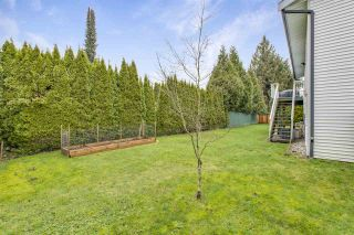 Photo 35: 19549 115B Avenue in Pitt Meadows: South Meadows House for sale : MLS®# R2537303
