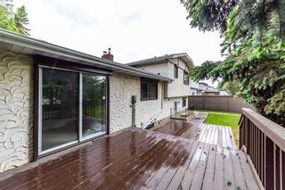 Photo 23:  in Edmonton: Zone 22 House for sale : MLS®# E4248753