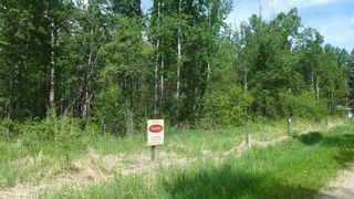 Photo 22: 54411 RR 40: Rural Lac Ste. Anne County Rural Land/Vacant Lot for sale : MLS®# E4239946