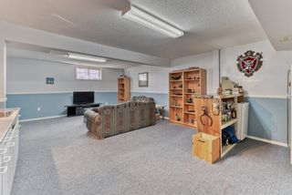Photo 30: 424 Cole Crescent: Carseland Detached for sale : MLS®# A1106001