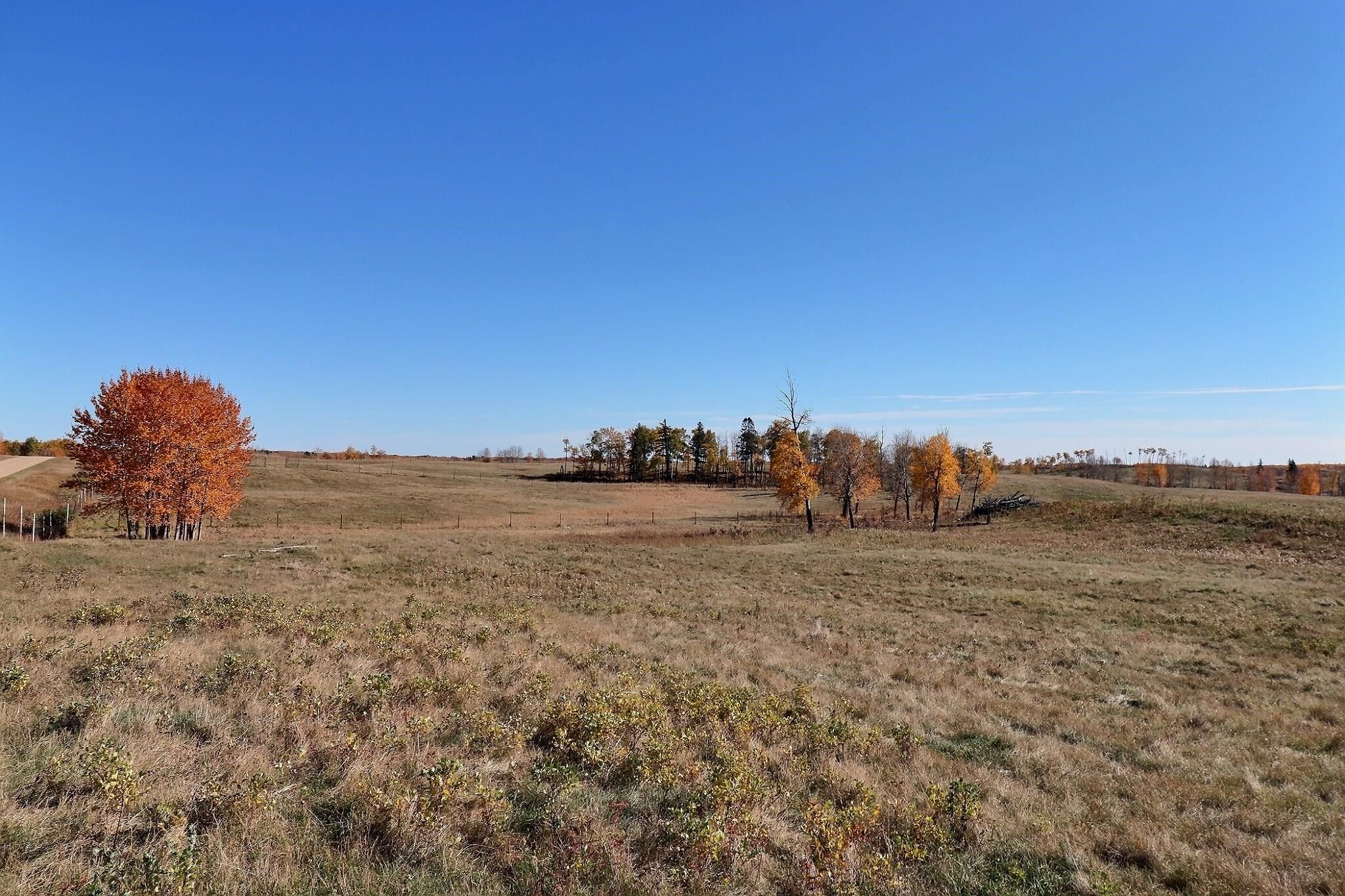 Main Photo: : Rural St. Paul County Rural Land/Vacant Lot for sale : MLS®# E4265680