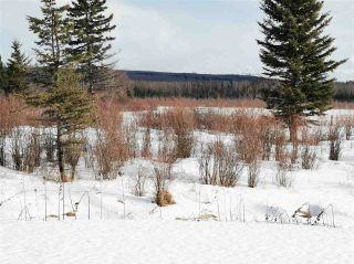 """Photo 9: 16458 SIPHON CREEK Road in Fort St. John: Fort St. John - Rural E 100th House for sale in """"CECIL LAKE"""" (Fort St. John (Zone 60))  : MLS®# R2444353"""