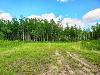 Photo 3: 138 Acres, RM of Meadow Lake #588 in Meadow Lake: Lot/Land for sale (Meadow Lake Rm No.588)  : MLS®# SK860207