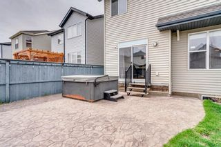 Photo 43: 1571 COPPERFIELD Boulevard SE in Calgary: Copperfield Detached for sale : MLS®# A1107569