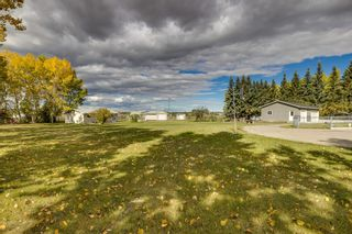 Photo 14: 261161 MOUNTAIN VIEW ROAD in Rural Rocky View County: Rural Rocky View MD Detached for sale : MLS®# A1153084