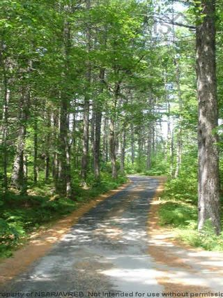 Photo 7: Lot 11 RAFUSE POINT Road in Pleasantville: 405-Lunenburg County Vacant Land for sale (South Shore)  : MLS®# 202122075