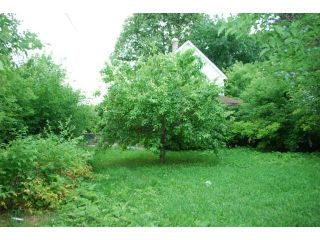 Photo 3: 697 Flora Avenue in WINNIPEG: North End Residential for sale (North West Winnipeg)  : MLS®# 1316189