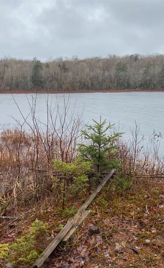 Photo 1: Lot 25 Shore Road in Walden: 405-Lunenburg County Vacant Land for sale (South Shore)  : MLS®# 202110565