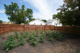 Photo 31: 117 3rd Street in Oakville: House for sale : MLS®# 202115958