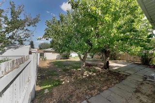 Photo 29: 13111 85 Street in Edmonton: Zone 02 House for sale : MLS®# E4251770