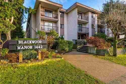 Main Photo: 316 1442 BLACKWOOD STREET in Whiterock: Home for sale : MLS®# R2523524