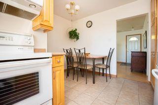Photo 17: 161 Crestwood Crescent in Winnipeg: Windsor Park Residential for sale (2G)  : MLS®# 202023611