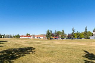Photo 28: 21 MCKENZIE Place SE in Calgary: McKenzie Lake Detached for sale : MLS®# A1032220