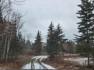 Photo 10: LOT 5 Hampton Mountain Rd Road in Hampton: 400-Annapolis County Vacant Land for sale (Annapolis Valley)  : MLS®# 202101575