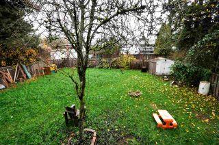 Photo 17: 11044 PARTRIDGE CRESCENT in Surrey: Bolivar Heights House  (North Surrey)  : MLS®# R2232852