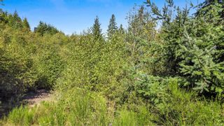 Photo 82: 4335 Goldstream Heights Dr in Shawnigan Lake: ML Shawnigan House for sale (Malahat & Area)  : MLS®# 887661