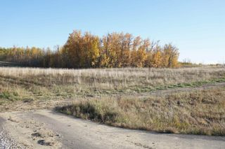 Photo 7: 17 53214 RR13: Rural Parkland County Rural Land/Vacant Lot for sale : MLS®# E4266457