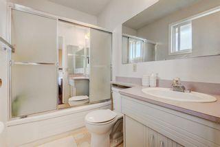 Photo 16: 114 Pinetree Bay NE in Calgary: Pineridge Detached for sale : MLS®# A1151101