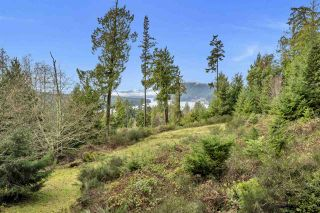 Photo 15: 407 CAMPBELL BAY Road: Mayne Island House for sale (Islands-Van. & Gulf)  : MLS®# R2531288