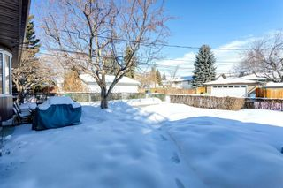Photo 40: 6412 Dalton Drive NW in Calgary: Dalhousie Detached for sale : MLS®# A1071648