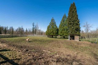 Photo 37: 26971 64 AVENUE in Langley: County Line Glen Valley House for sale : MLS®# R2566456
