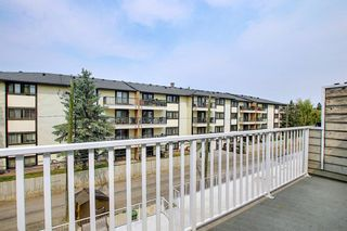Photo 13: 408 732 57 Avenue SW in Calgary: Windsor Park Apartment for sale : MLS®# A1134392
