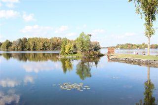 Photo 17: 61 Robinson Avenue in Kawartha Lakes: Rural Eldon House (Bungalow) for sale : MLS®# X3624976