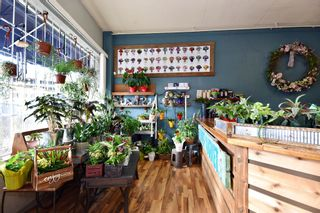 Photo 4: 33781 SOUTH FRASER WAY in Abbotsford: Central Abbotsford Business for sale : MLS®# C8028645
