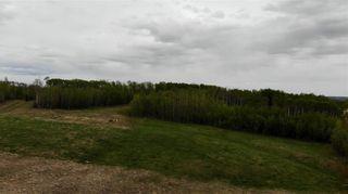 Photo 3: Viewmar Drive: Rural Ponoka County Land for sale : MLS®# C4288523