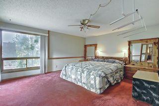 Photo 26: 27 Castlebury Way NE in Calgary: Castleridge Detached for sale : MLS®# A1124500