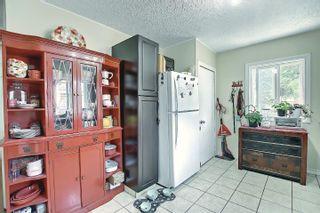 Photo 9: 10933 150 Street in Edmonton: Zone 21 House for sale : MLS®# E4251858