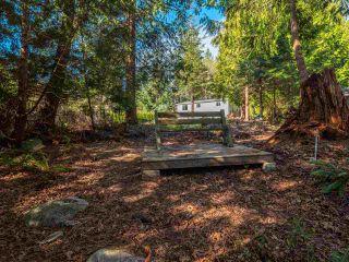 Photo 9: 7735 REDROOFFS Road in Halfmoon Bay: Halfmn Bay Secret Cv Redroofs House for sale (Sunshine Coast)  : MLS®# R2564522