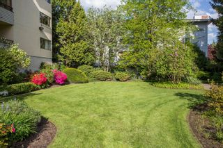 """Photo 24: 309 20460 54 Avenue in Langley: Langley City Condo for sale in """"WHEATCROFT MANOR"""" : MLS®# R2454205"""