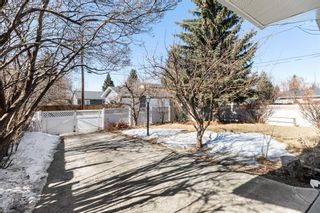 Photo 5: 11419 Wilson Road SE in Calgary: Willow Park Detached for sale : MLS®# A1079047