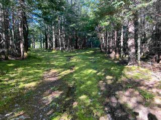 Photo 8: Lot Seaview Road in Seaview: 305-Richmond County / St. Peters & Area Vacant Land for sale (Highland Region)  : MLS®# 202124486