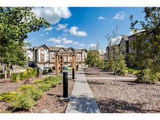 Photo 34: Luxury Calgary Realtor Steven Hill SOLD Copperfield Condo
