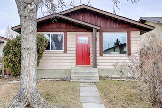 Main Photo: 48 Falsby Way NE in Calgary: Falconridge Detached for sale : MLS®# A1085726