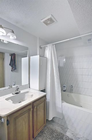 Photo 23: 2735 41A Avenue SE in Calgary: Dover Detached for sale : MLS®# A1082554