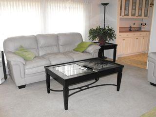 Photo 4: 5506 55 Avenue: St. Paul Town Mobile for sale : MLS®# E4255135