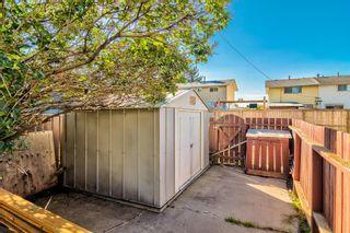 Photo 40: 2923 Doverville Crescent SE in Calgary: Dover Semi Detached for sale : MLS®# A1146625