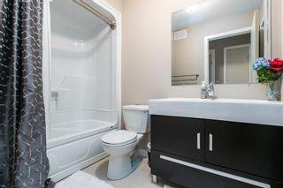 Photo 14: 381 Queen Street in Winnipeg: St James Residential for sale (5E)  : MLS®# 202025695