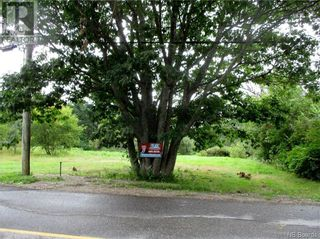 Photo 2: 198 Pleasant Street in St. Stephen: Vacant Land for sale : MLS®# NB062836
