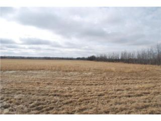 Photo 6: 0 Hwy 6 Road in WDLNDSRM: Argyle / Balmoral / Grosse Isle / Gunton / Stony Mountain / Stonewall / Marquette / Warren / Woodlands Residential for sale (Winnipeg area)  : MLS®# 1006005