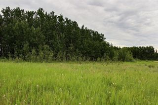 Photo 7: 33538 Rg RD 30: Rural Mountain View County Land for sale : MLS®# C4305650